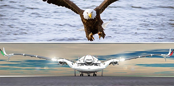 Aircraft inspired by animals