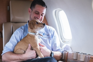 Flying With Pets in USA